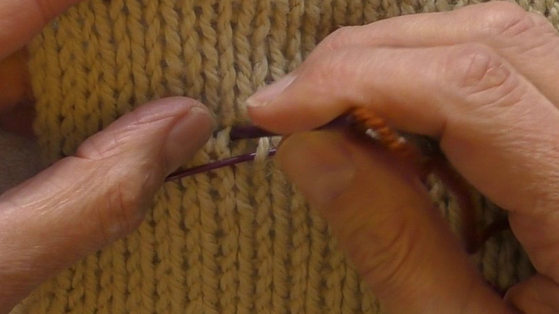 The working yarn has been threaded onto an embroidery needle. The tip of the needle is between the left leg of the left-most stitch to be picked up and the right leg of the stitch to its left.