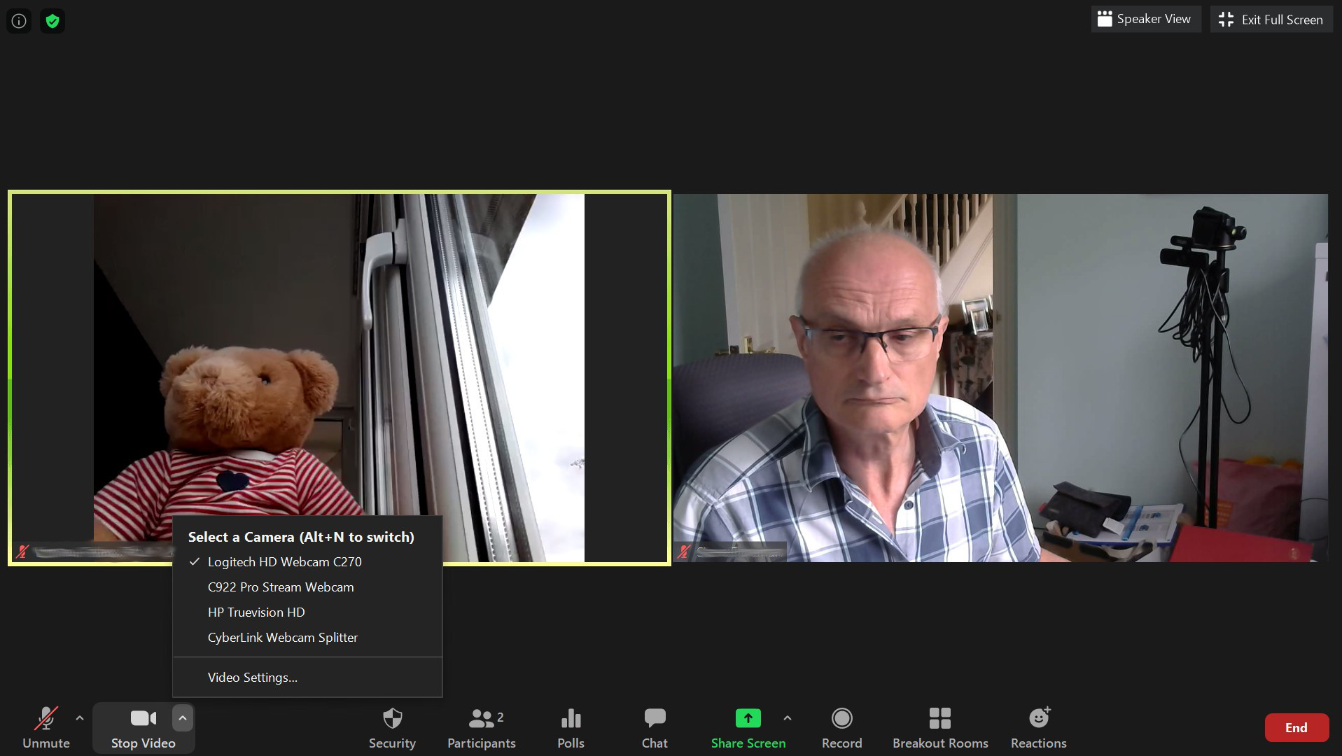 Two participants in a video conference session: a Teddy Bear and an adult male.